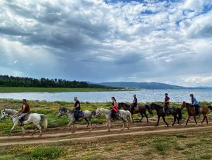 5 Day Horse Riding Tour among Herds Of Deer around the Largest Dam in Bulgaria