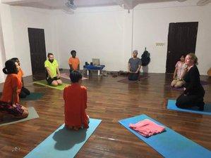 65 Tage 200-Stunden Transformative Online Yogalehrer Ausbildung