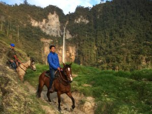 4 Day Colombian Coffee Region Horse Riding Holiday in Caldas, Colombia