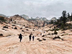 4 Day Yoga & Hiking Wellness Retreat in Zion National Park