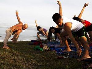 25 Days 200-Hour Holistic Yoga Teacher Training in Costa Rica