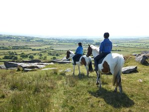 7 Days Scenic Horse Riding Holiday in Beautiful Cornwall, UK