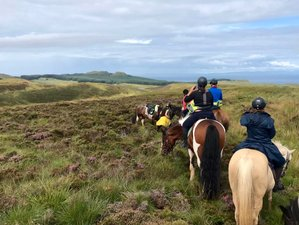 4 Day Mull of Kintyre Horse Riding Holiday, Short Break on Scotland's Hidden Coast and Beaches