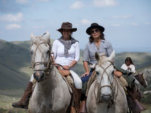 3 Day Andes Mountain Estancia Stay with Daily Horse Riding near Mendoza