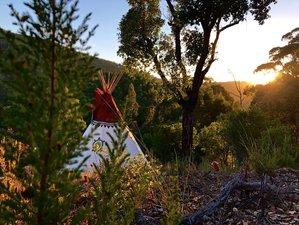 9 Day Healing Plant Medicine Retreat in Algarve