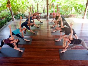 8 Days Private Meditation and Kundalini Yoga Retreat in Bali