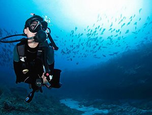 4 Day Explore Diving More: PADI Advanced Open Water Diver Course in Weligama, Southern Province