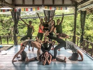 18 Days 200-Hour Yoga Teacher Training Koh Phangan,Thailand