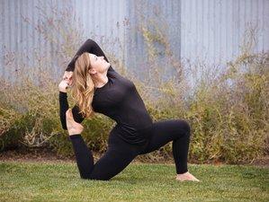 200-Stunden Selbstbestimmte Online Yogalehrer Ausbildung mit der Cascade School of Yoga