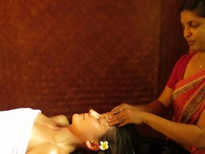 11 Day Wellness and Yoga Holiday in Kalpetta, Wayanad