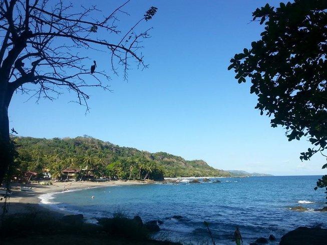 7 días retiro de yoga y español en Montezuma, Costa Rica