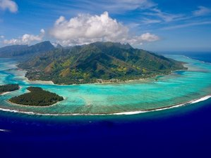 7 Day Private Coaching Health and Wellness Retreat in Tahiti Moorea