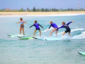 9 Day Learn to Surf All Levels Surf Camp in Arugam Bay, Eastern Province