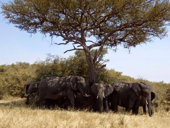 3 Days Affordable Kenya Safari Tour