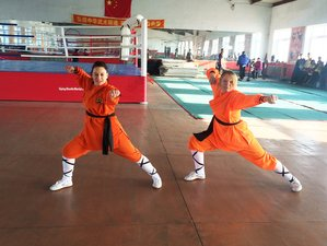 2 Years Wing Chun and ShaolinKung Fu Training in Jilin, China