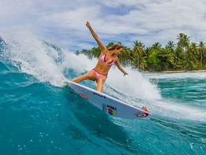11 Days Luxury Surf Camp in Mentawai Islands, Indonesia