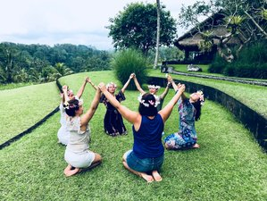 7 Day Exclusive 7 Steps to Bliss Self-Healing & Chakra Energy Training in Bali, Indonesia