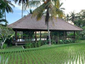 3 Day Spiritual Wellness Retreat with Spa, Health Counseling, Healing & Yoga in Ubud, Bali