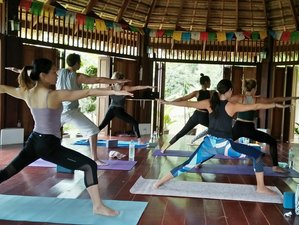 15 Days Zen Fit Burn Yoga Retreat in Koh Samui, Thailand
