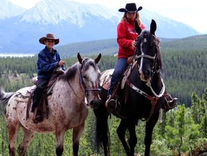 2 Days Horseback Riding and Camping in Alberta, Canada