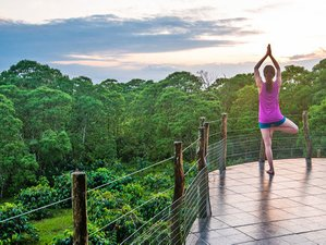 8 Days New Beginning Yoga Retreat in Ecuador
