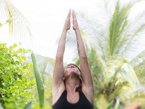3 Days Ashtanga and Vinyasa Yoga Retreat in Balian Beach,Bali