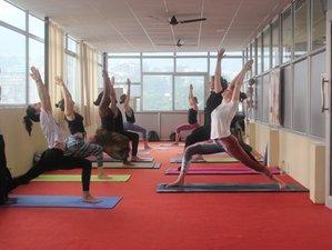 61 Days 500-Hour Vinyasa Yoga School, Teachers Training in Rishikesh, India