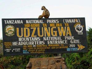 4 Days Udzungwa Mountain Trekking Safari in Tanzania