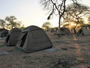 13 Days Safari Maasai Mara/Lake Nakuru/Amboseli/Arusha/Tanganyire/Ngorogoro/Serengeti/L.Manyara