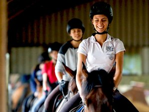 7 Day Horse Riding and English Summer Camp for Kids (11 - 17 years) in Centre, County Cork