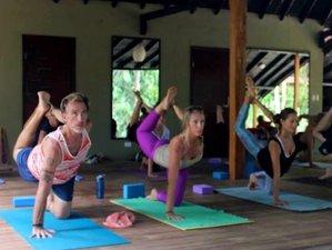 21 días profesorado de yoga de 200 horas en Costa Rica