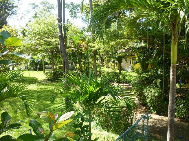 3 jours en retraite de yoga et guérison divine à Koh Samui, Thaïlande