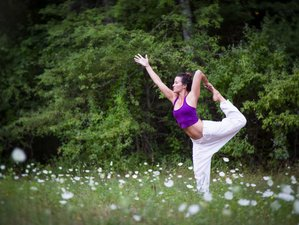 4 Days Martha's Vineyard Yoga Retreat USA