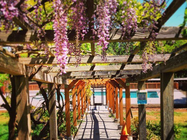 6 Days Women's Cycling, Wine Tasting, and Yoga Retreat in California, USA