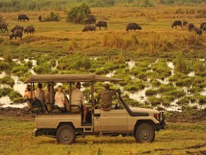 12 Days Cultural Tour and Wildlife Safari in Zimbabwe