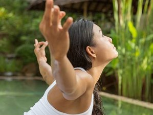 8 Day 'Full Body Reset' All Inclusive Retreat on the beautiful island of Koh Samui, Thailand