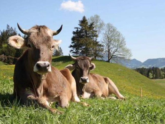 4 Days Kundalini Yoga Retreat in Bavaria, Germany
