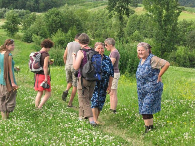 8 Day Walking and Culinary Holiday in Transylvania
