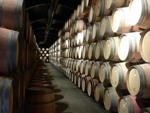 3 Days Wine Holiday in Porto, Portugal