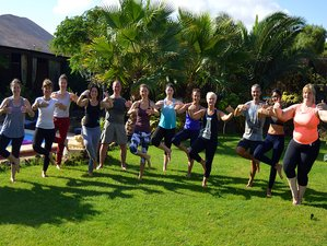8 Days Tai Chi, QiGong and Taoist Yoga Holidays in the Canary Islands, Spain