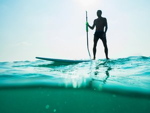 8 Days White & Blue - SUP & Surf in Ericeira, Lisbon Area, Portugal