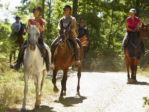 4 Days Amazing Horse Riding Holiday in Tuscany, Italy