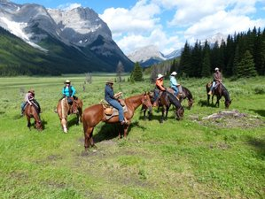6 Days Unforgettable Trail Riding Holiday in Alberta, Canada