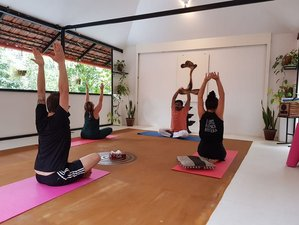 7 Day De-Stress Yoga, Meditation, and Ayurveda Retreat in Kerala