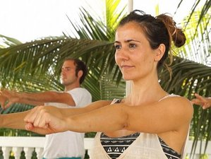 6 Days Yoga Workshop for Beginners in Goa, India