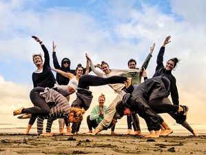 27 Days 300 Hour Yoga Teacher Training in Rotorua, New Zealand