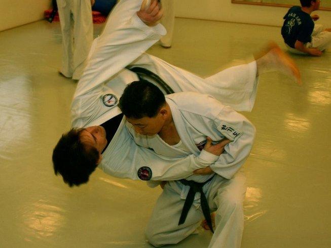22 Days Hankumdo, Hankido, and Hapkido in South Korea