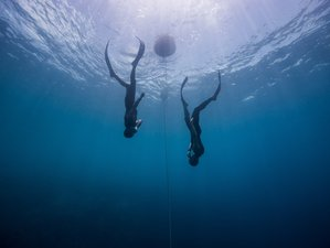 8 Days Static Apnea, Freediving, and Yoga Holiday in Thailand