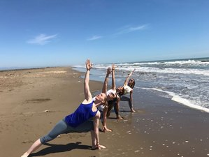 23 Days 200-Hour Certified Hatha Yoga Teacher Training in Spain