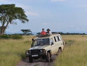 8 Days Uganda Primate Safari